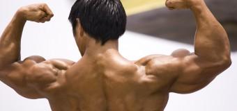 Comment prendre du muscle : Le trio gagnant