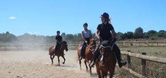 Partir à la campagne pour faire de l'équitation